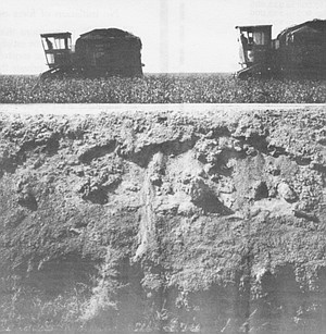 Cotton harvesting. The gross farm income for Imperial County in 1987 placed it among the top ten agricultural counties in the United States.