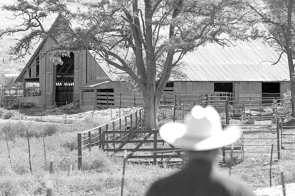 Milking barn. Cauzza's father came from Switzerland in the 1930s to work on the dairy and cattle ranch where San Diego Country Estates now lies, later in Santa Ysabel.