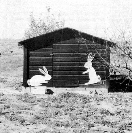 Bunny house. Part of looking is longing. Part of looking is trying to bridge gaps, to overcome distances between looker and looked-at.