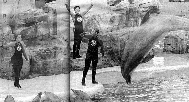 "SeaWorld dolphin show. ""It seems to me, walking along, that I've become a kind of dolphin myself."""