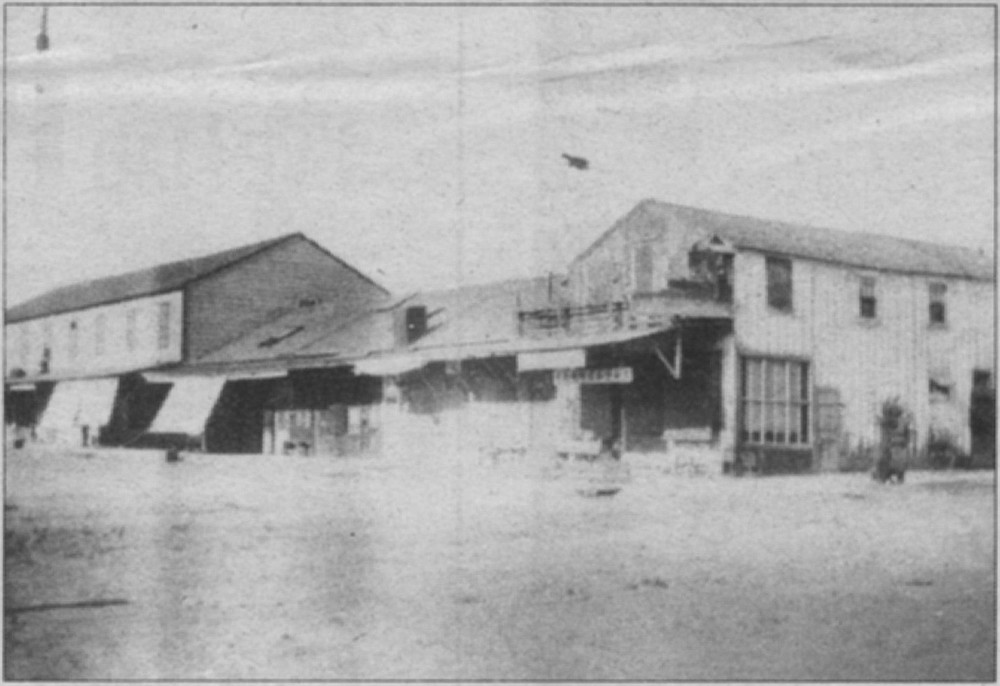 Hai Wo Hong pharmacy/herb store, c. 1900