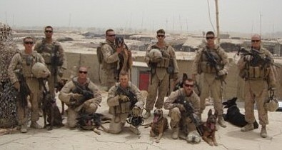 USMWDs on duty with their handlers.
