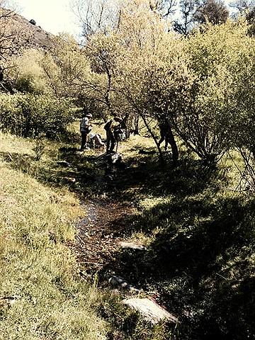 Secret Canyon: Pine Valley Creek Wilderness Trail   San ...