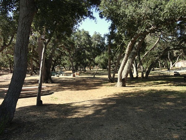 Picnic grounds at Live Oak County Park