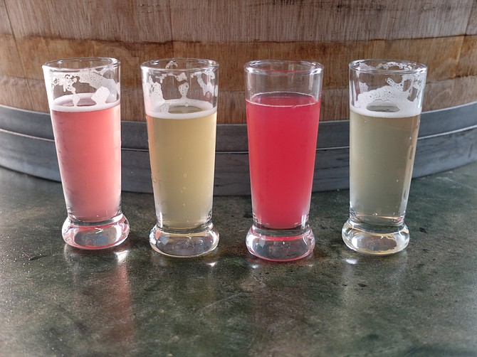 Four flavors of Bootstrap Kombucha: blueberry, apricot, beet apple ginger, and raw.