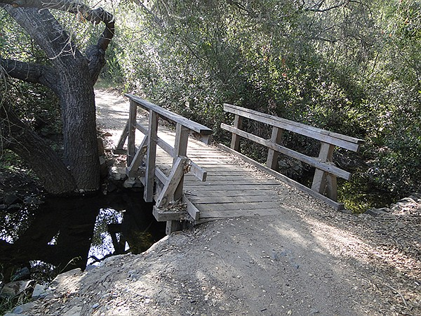 Foot bridge along the Trans-County Trail