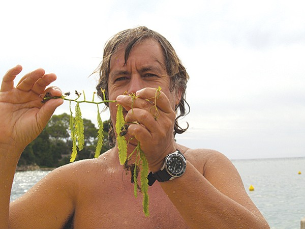 Eric Muñoz holding Caulerpa taxifolia in France last year