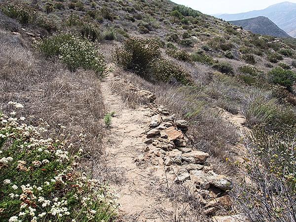 Old historic road in Eagle Peak Preserve