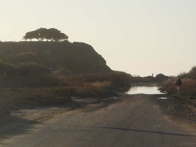 inches of water in the road at Yogurt Canyon. The beach is a tenth of a mile past the tree on the mesa.