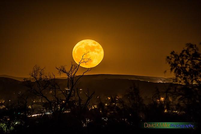 Super Full Moon Rising over Chula Vista at Otay River Valley