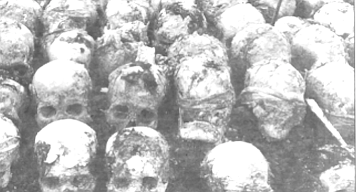 Mass grave of Khmer Rouge victims, uncovered in 1980 - Image by From book The Pol Pot Regime
