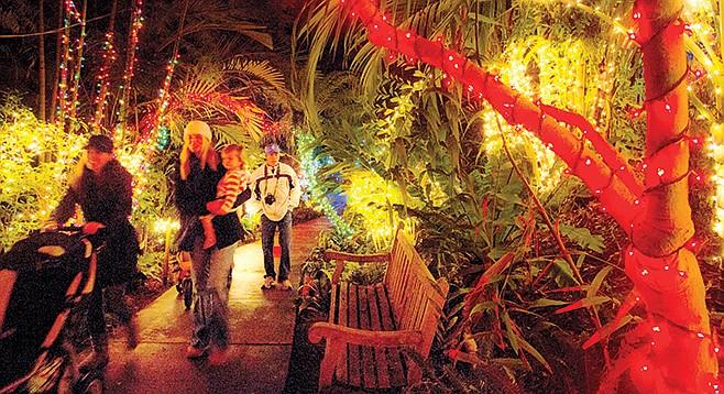Garden of Lights at the San Diego Botanic Garden