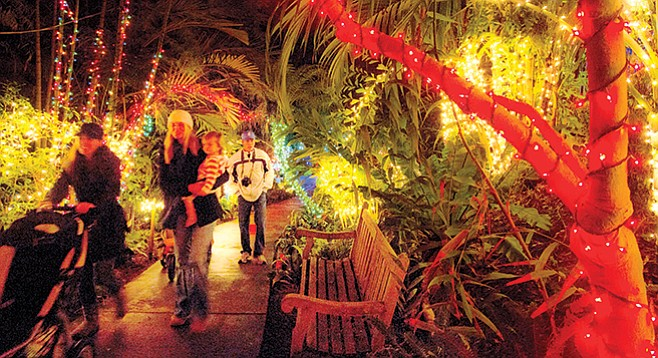 garden of lights at the san diego botanic garden - San Diego Botanic Garden