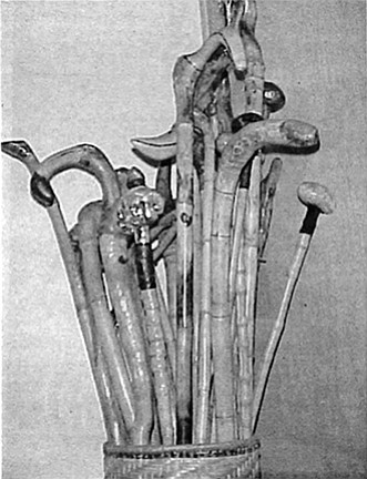 """Brian's canes. """"I carve the handles out of the roots and sell them out of a little shop down in P.B. — Mrs. Milton's Sea Treasury at the Crystal Pier."""""""