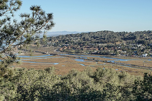 Torrey Pines Beach Trail: view of Los Penasquitos marsh from the park