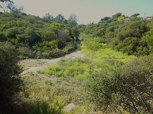 Juniper Canyon's north trail