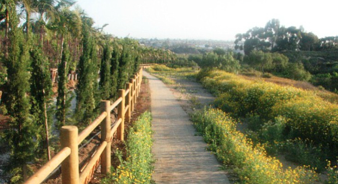 Among the many established paths in the Tijuana River Valley