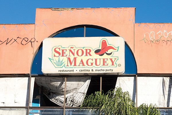 """Mucho party"" at Señor Maguey"