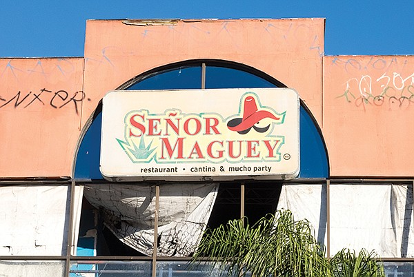 """""""Mucho party"""" at Señor Maguey"""
