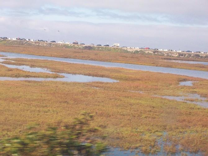 From the train heading north.