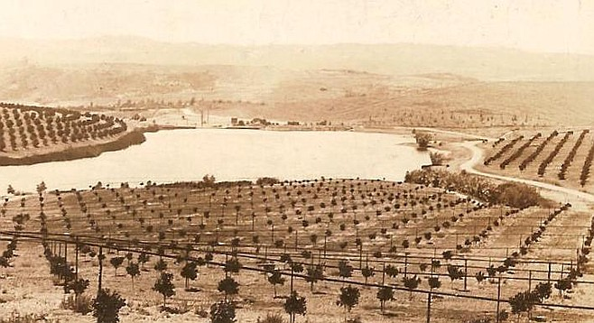 "Lusardi became known as the ""pioneer Italian sheep king of San Diego County."" Film stars Mary Pickford and Douglas Fairbanks bought Lusardi's land and planned their dream estate, ""Rancho Zorro."""