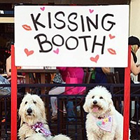 """The event promoters use the word """"doggie"""" often. If you think that's cute, you're sure to love this event. If not, you may still be able to have a good time."""