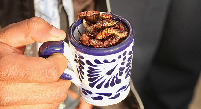 "Tijuanenses usually purchase chapulines for tourists as a ""dare you"" snack."