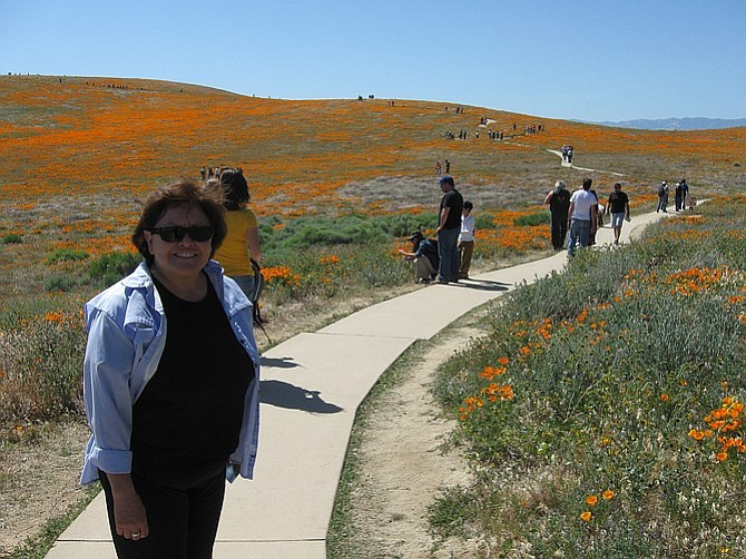 Hiking the poppy trail in late May.