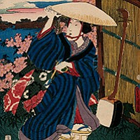 A celebration in hanami, the Japanese tradition of welcoming spring