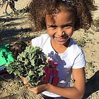 Planting, habitat restoration, art, and more, all for the San Diego River