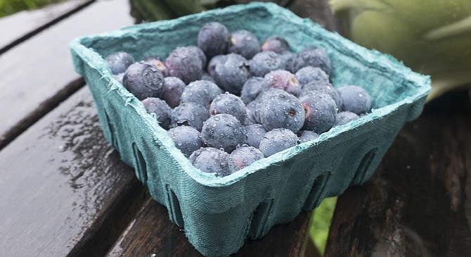 Despite the rain, some locally grown blueberries (and strawberries) may be found in March.