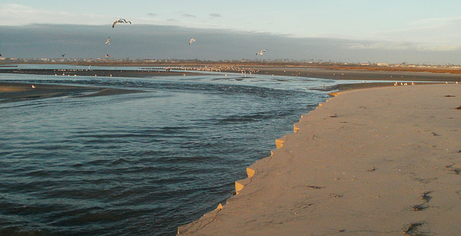 The Tijuana Estuary stands to lose allocations of about $23 million in Trump's proposed budget.