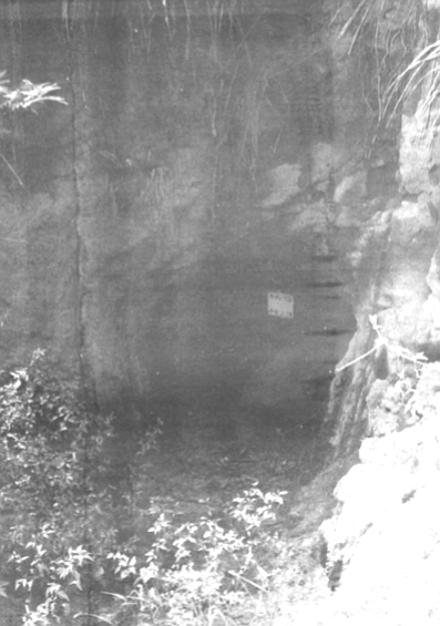 Cave entrance on Iwo Jima. Through the darkness and spin of my head, I hear, tunk, tunk, tunk. My other flashlight is rolling down the stairway.