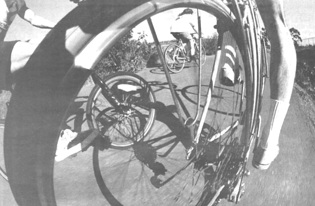 """""""Father and his daughter riding their tandem in Carlsbad. Some guy from the Del Mar Fairgrounds, betting on the racing, totally blitzed, plowed into 'em at 70 miles an hour. Killed 'em."""""""