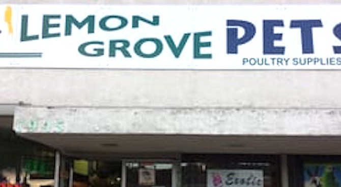"""Lemon Grove Pets (from Yelp). """"Some minor issues were noted, which the owner dealt with immediately."""""""