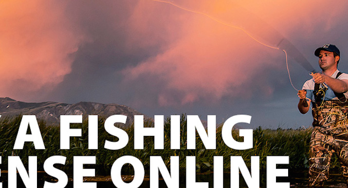 Finally for calif a 12 month from date purchase fishing for Renew fishing license