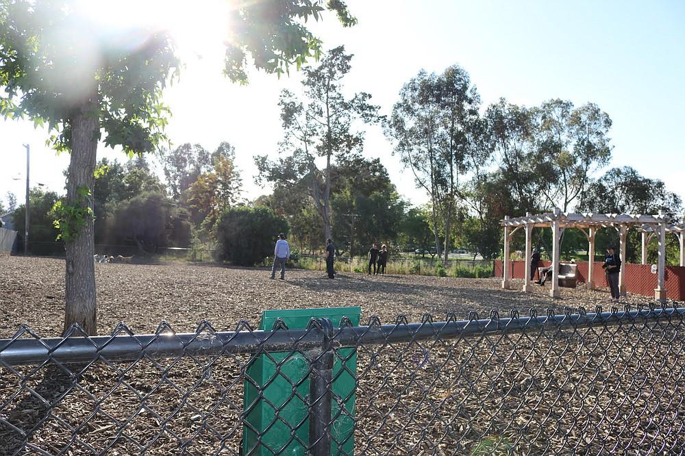 Ward Canyon dog park
