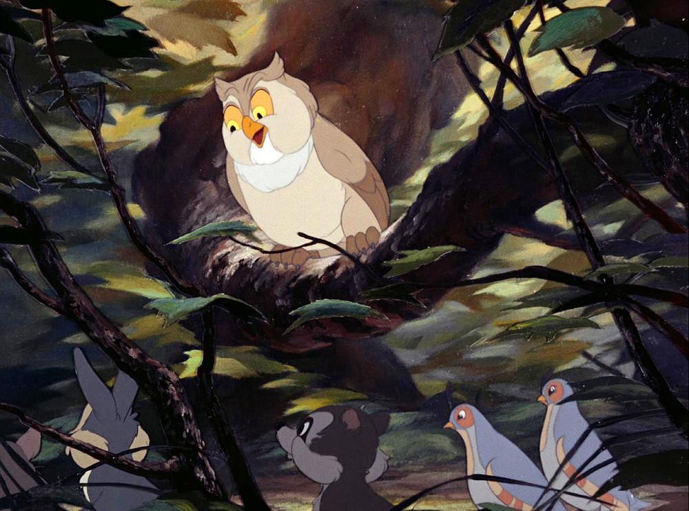 Friend Owl.