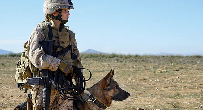 Megan Leavey: Kate Mara stars as the real-life Wonder Woman who along with K9 soldier Rex helped to save over 100 lives.