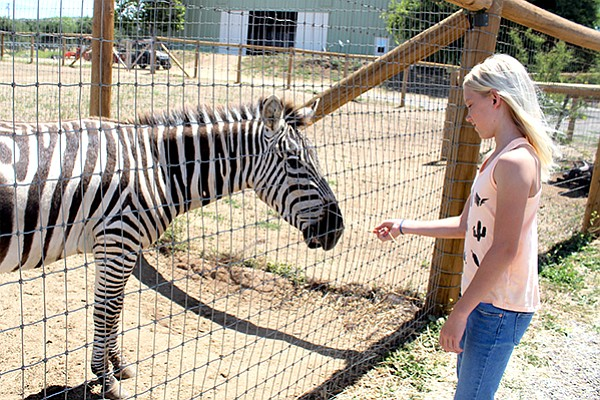 The Children's Nature Retreat is a quiet alternative to the bustling San Diego Zoo. Guests are limited to 100 per day.