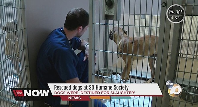 Humane Society on Channel 10 News. Lagstein from SEIU said that he is worried about the employees who stand to lose their jobs,
