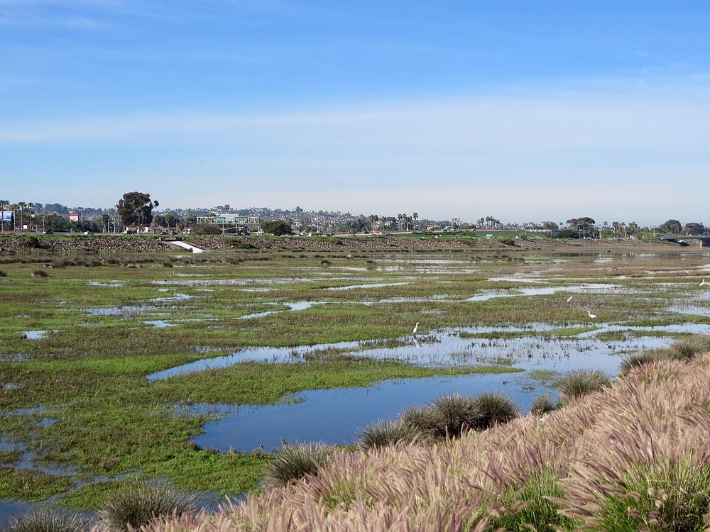 Rewild Mission Bay marsh.  A channel would be dredged along the southern tip of the cove, turning it into an island.