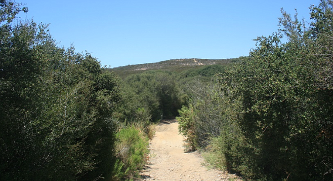 The Del Mar Mesa preserve is owned by the city of San Diego, California Department of Fish & Wildlife, the U.S. Fish & Wildlife Service, the county, and private owners.
