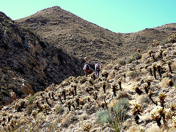 View from the trail. Access through Mortero Palms is the recommended hiking route to view the trestle.