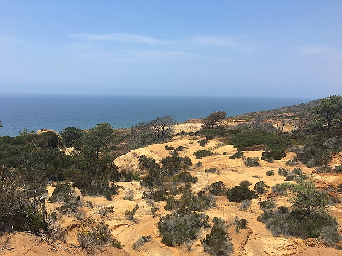 Torrey Pines State Reserve view.  From Broken Hill.  July 18, 2017