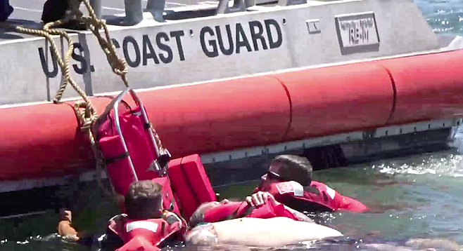Coast Guard managed with much difficulty to get him onto a stretcher and pulled up on to the back of their boat.