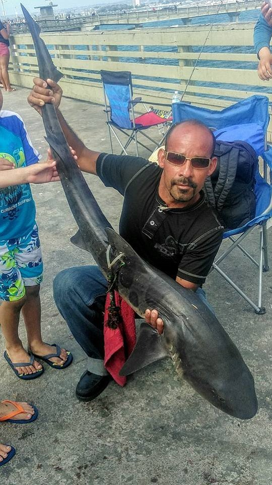 José Plascencia and a tagged leopard shark he caught