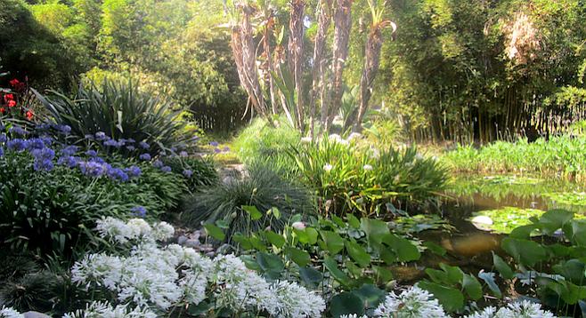 Huntington Library Botanic Gardens L A Day Trip San Diego Reader