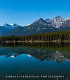 A lake reflecting the glaciers and trees along the Icefields Parkway from Lake Louise to ...