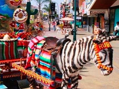 (Photo: El Sol de Tijuana)